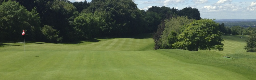 Tyrrells Wood Golf Club 6th Hole