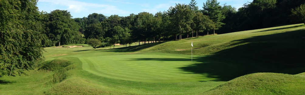 Tyrrells Wood Golf Club 15th Green