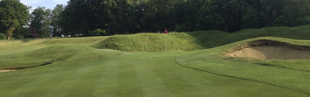 Tyrrells Wood Golf Club 9th Hole