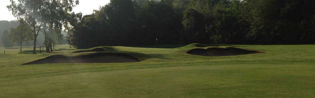 Tyrrells Wood Golf Club 3rd Green June 2014