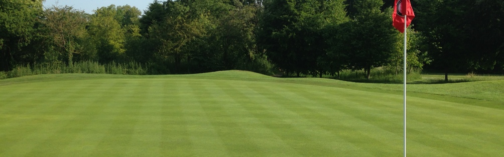 Tyrrells Wood Golf Club 4th Green