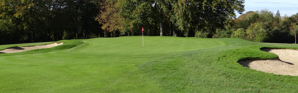 Tyrrells Wood Golf Club 16th Green November 2013