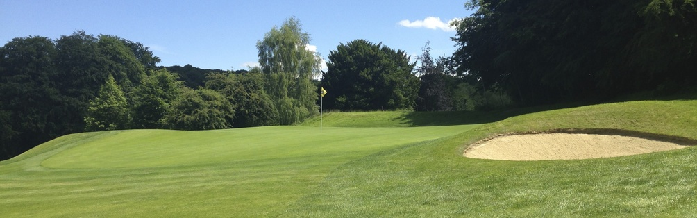 Tyrrells Wood Golf Club 5th Green June 2014
