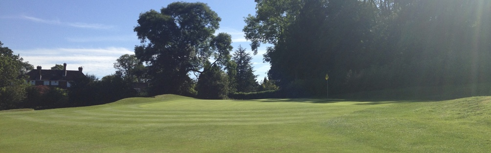 Tyrrells Wood Golf Club 17th Green