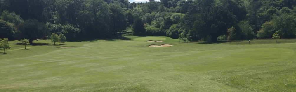 Tyrrells Wood Golf Club 10th Hole