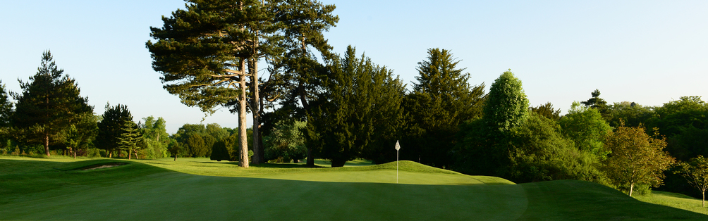 Tyrrells Wood Golf Club 7th Green